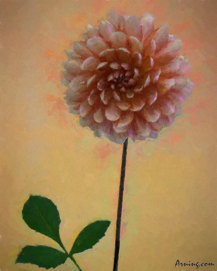 Fair's Floriculture