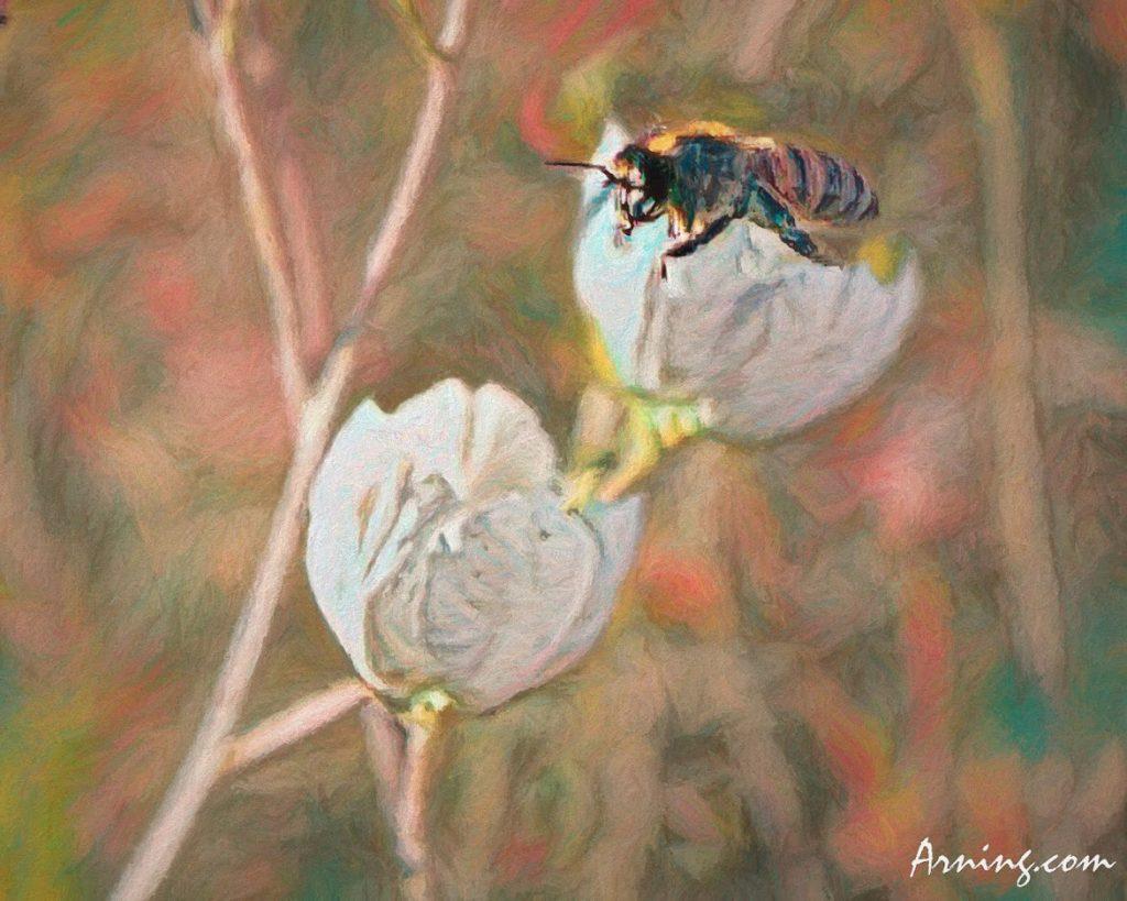 Field Bee