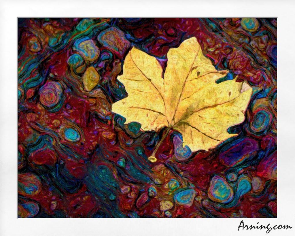 Soul Foliage