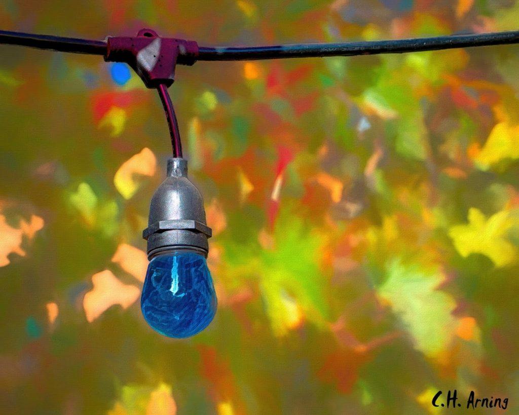 Tree illumination