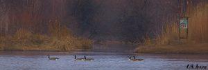 Rio Grande River Mile 187