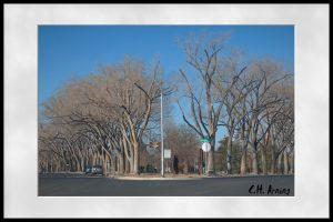 Altura Park
