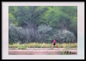 bosque runner
